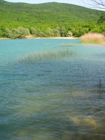 Байдарская долина. Лесное озеро