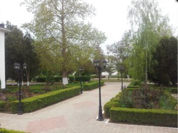 Парк в Андреевке